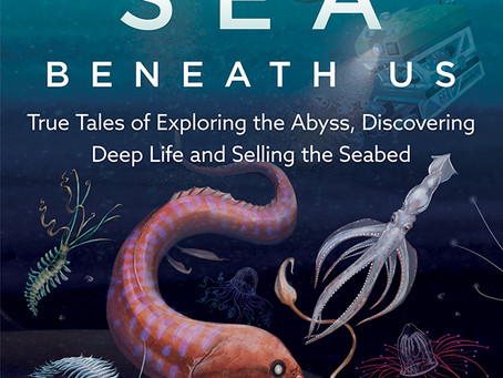 THE SEA BENEATH US by Dr. HELEN SCALES
