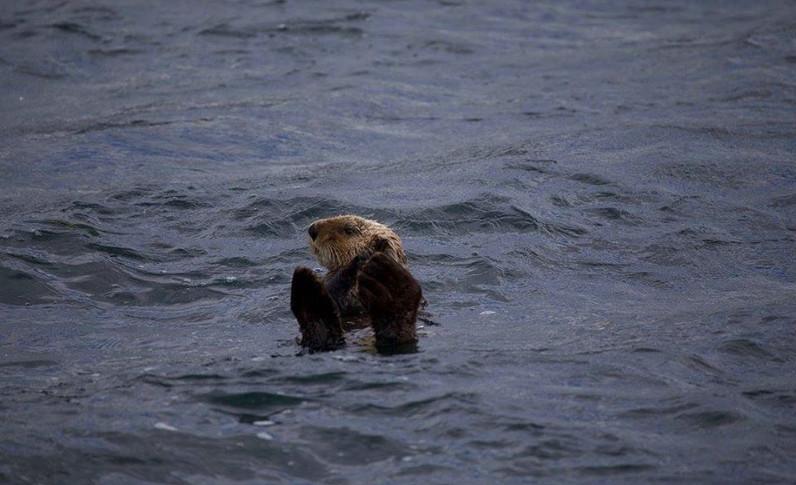 Alaska_07b.jpg