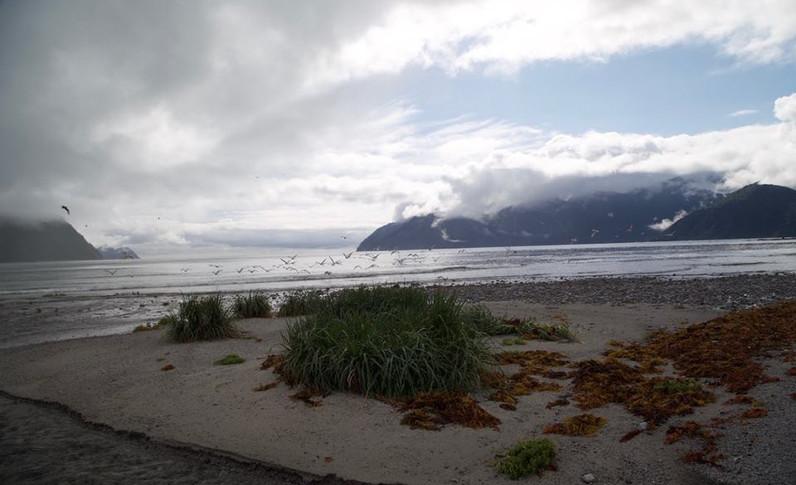 Alaska_03.jpg