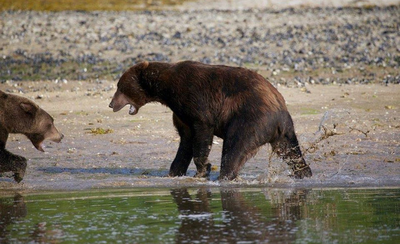 Alaska_27.jpg
