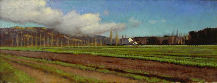200517_Sunlight_on_Weber_Farmhouse_4x11i