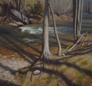 """Riverbank Shadows in Spring"""