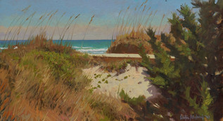 """Topsail-Dune with Dark Pines"""