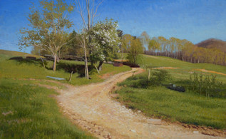 """""""Homestead Late Afternoon Blossoms"""""""