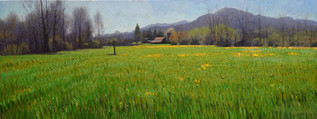 """""""April Field with Yellow Flowers"""""""