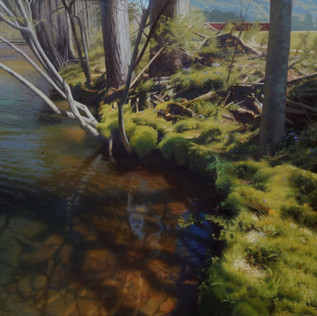 """""""Riverbank on a Spring Afternoon"""""""