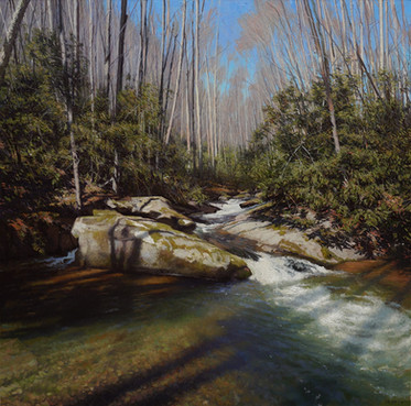 """Shadows on Cold Spring Creek"""