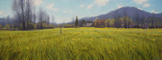 """""""Appalachian Spring with Yellow Flowers"""""""