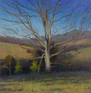 """Bethel Tree in Early Spring"""