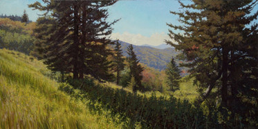 """Morning on Roy Taylor Overlook"""