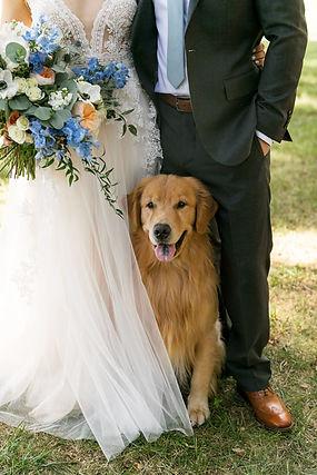 Arrow_wedding.jpg