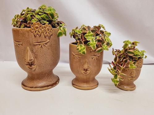 Ceramic Lady Face Planter with Crassula Marginalis plant