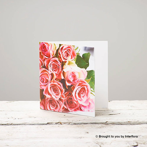 Rose Greetings Card