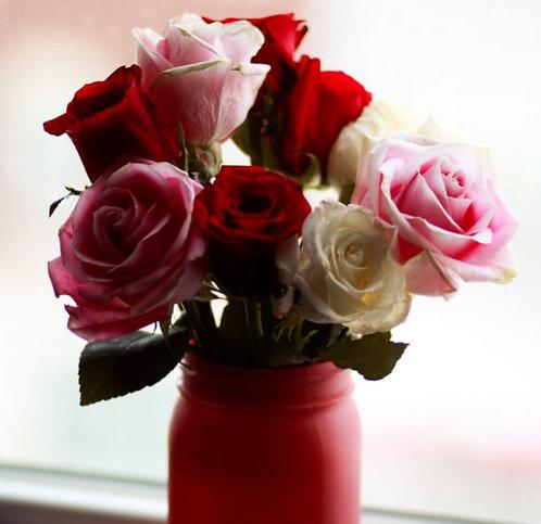 Mixed rose's