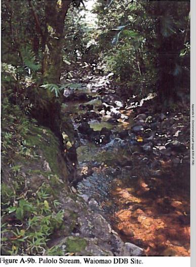 appendixE.pg339b.jpg