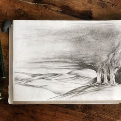 Three oakes on a Foothill / Anja Stuurman