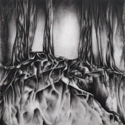 Roots / Anja stuurman