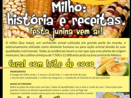 Milho, história e receitas