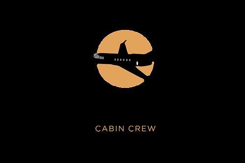 Elite Cabin Crew Free eBook