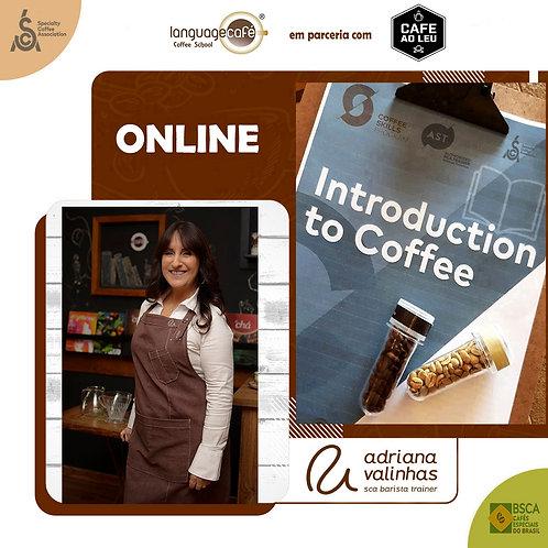 Introdução ao Café Especial - Certificado CafeaoLeu/LanguageCafe