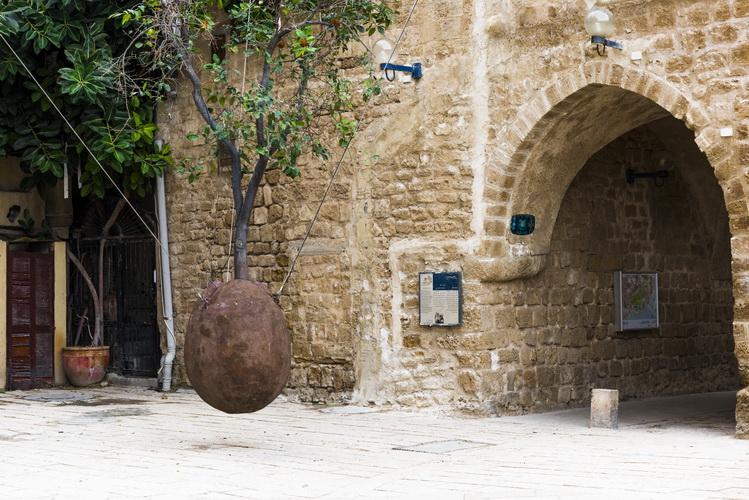 Hovering orange tree in Jaffa