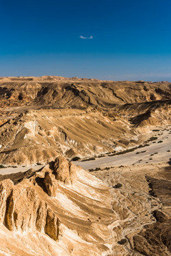 Dry river bed in the Negev desert