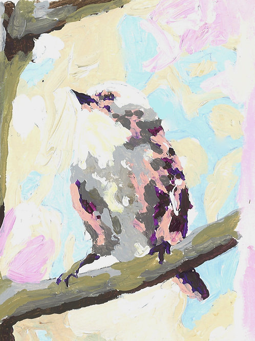 Song bird, white and purples