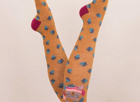 Nerd bear Knee high socks