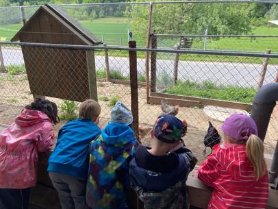 Kindergartenreise