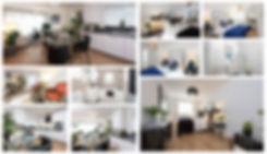 Collage plot 2.jpg