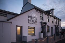 Whitehorse-web-5494