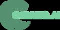 Cyrano AI Logo.png