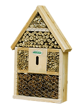 kisspng-insect-hotel-beetle-balance-of-nature-green-lacewi-paul-geerts-5b06f141198503.5015