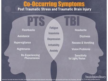 An Encounter with a PTS Brain through Sociodrama