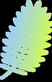 barevné Branch