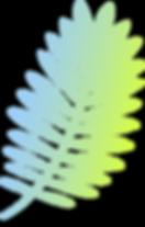 Rama colorida