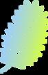Direction coloré