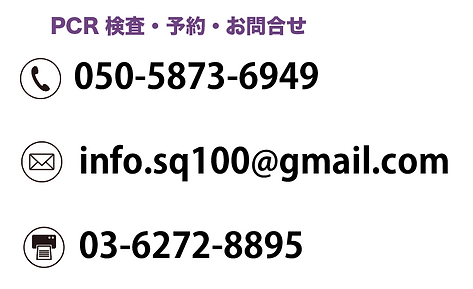 スクリーンショット 2020-08-25 1.35.05.png