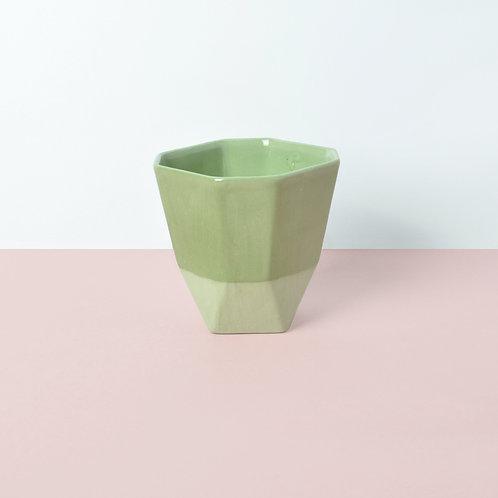 Pilea / groen