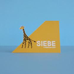 Geboortekaartje Siebe
