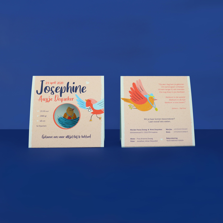 Geboortekaartje Josephine