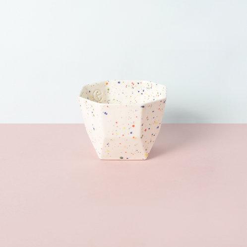 Yucca / confetti