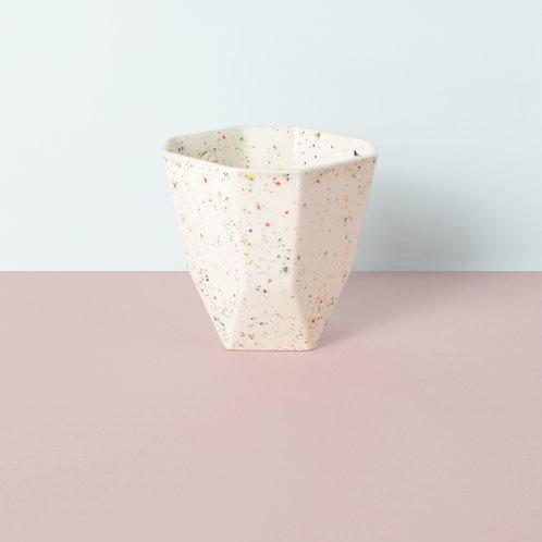 Pilea / confetti