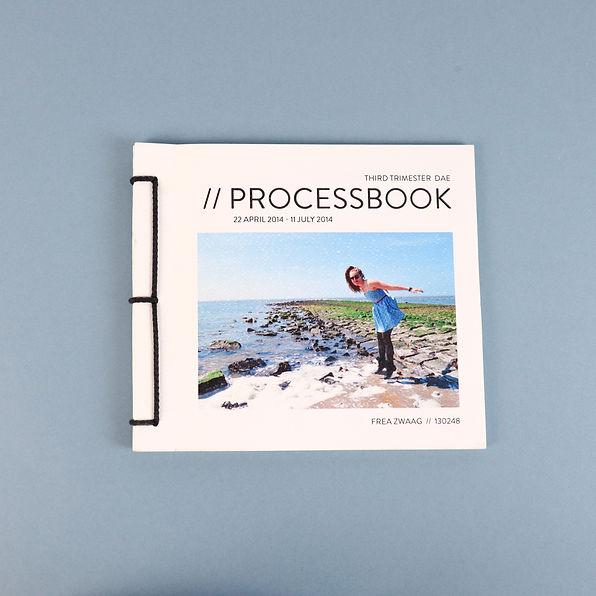 Processbook third trimester Design Academy Eindhoven