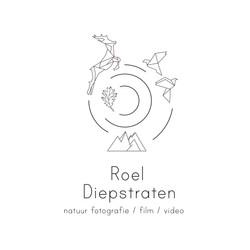 Logo Roel Diepstraten