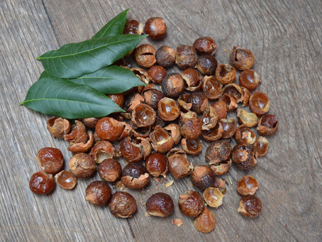 Soapnuts and Science