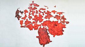 EL DESARROLLO FRONTERIZO VENEZOLANO: UN ROMPECABEZAS. 1era PARTE