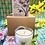 Thumbnail: Bee Fayre Votive Candles