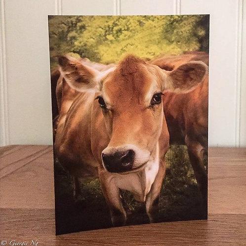Jersey Gal Greeting Card