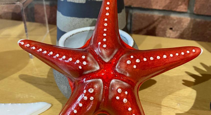 Pippa_starfish.jpg